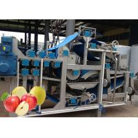 Cheap Safety SUS 304 Apple Processing Equipment  Apple Puree Processing Plant for sale