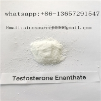 Cheap 99% Purity CAS 315-37-7 White Cutting Cycle Steroids Powder Testosterone Enanthate For Fast Muscle for sale