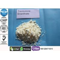 Cheap Human Muscle Building Tren Anabolic Steroid Tren E / Trenbolone Enanthate Powder for sale