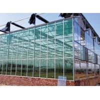 Buy cheap Film, Glass, PC Sheet Commercial Greenhouse from Chinese supplier from wholesalers