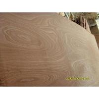 Cheap Hardwood Face Plywood-1 for sale
