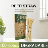 Cheap Bestseller 2019 Biodegradable Compostable Straw Drinking, Biodegradable Reed Straws for sale