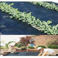 Cheap weed barrier cloth around trees 4.5m x 100m 100g Weed Control Ground Cover Membrane for sale