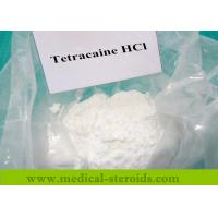 Cheap White Solid Anabolic Steroid Powder Tetracaine Hydrochloride For Mucosa Anesthetic for sale