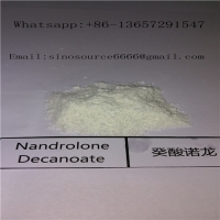 Cheap CAS 360-70-3 Deca Muscle Supplement / Deca Anabolic Steroids For Bodybuilding for sale