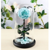 Buy cheap Hot sale Natural Fresh flower rose in big long glass dome Home Decoration and from wholesalers