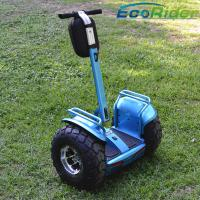Cheap Electric Personal Transportation Vehicles 19 Inch Tire Free Standing for sale
