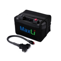 Cheap ISO14001 12V 307.2Wh Electric Golf Cart Lithium Battery for sale