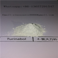 Cheap White Raw Sreroids Powder 4- Chlorodehydromethyltestosterone Turinabol - Oral For Muscle Grain 99% Purity CAS 2446-23-3 for sale