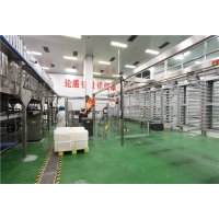 Cheap Ketchup 150t/D 800g/Tin Tomato Processing Line Extracting for sale