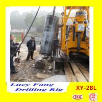 Cheap China Hot Sale XY-2BL Truck Big-pile Hole Drilling Rig With 600 mm dia. and 50 m Depth for sale