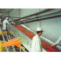 Cheap Professional Carrot Processing Plant  / Fruit And Vegetable Processing Equipment for sale