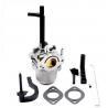 Buy cheap 796322 696133 Generator Briggs Stratton Carburetor from wholesalers