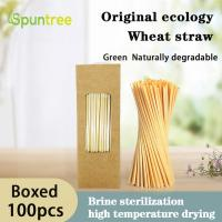 Cheap 100% Biodegradable Compostable Disposable Natural Drinking Wheat Straw for sale