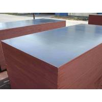 China poplar core wbp glue 18mm shuttering plywood/China film faced plywood/marine plywood for construction on sale