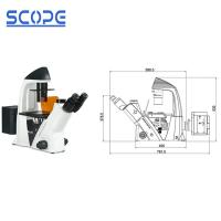 Cheap Infinity Plan Objective Inverted Epifluorescence Microscope , Inverted Optical Microscope for sale