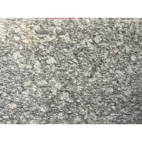 Cheap Spary White Polished Granite Floor Tiles Fashionable Appearance for sale