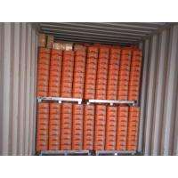 Cheap Hot Dipped Galvanized Temporary Fencing Panels for sale