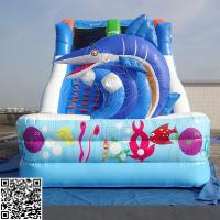 Cheap Marine Style PVC Tarpaulin 0.55mm Double Inflatable Dry Slides Commercial Grade for sale