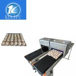 Intelligent Safe Egg Stamping Equipment, Graphic Logo Making MachineFor Eggs