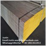 Cheap LVL Laminated Scaffolding Planks\boards Dubai in Uae for sale