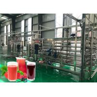 Cheap Multifunctional 20T/Day Berry Jam Processing Line for sale