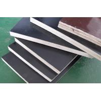 Cheap film faced plywood /construction plywood for sale