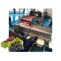 Cheap Concentrated  Grape Juice Processing Line / Fruit Juice Processing Equipment for sale