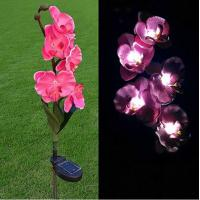 Cheap Pink Phalaenopsis Stainless Steel Solar Garden Lights, Flower Solar Powered Outdoor Lights for sale