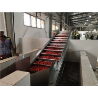 Cheap 2000T/D Tomato Concentrated Vegetable Processing Line SS304 for sale