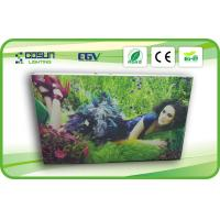Cheap 12V Single Side LED Textile lightbox Illuminated For Exhibition , PMMA for sale