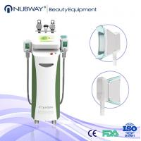 Professional Pulse Cryolipolysis Fat Freeze Slimming Machine with CE