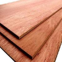 Cheap Commercial Plywood for sale