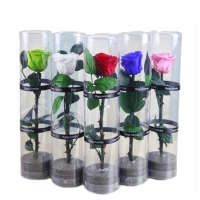 Cheap Wholesale fresh preserved roses with long stems Decorative Flowers for sale
