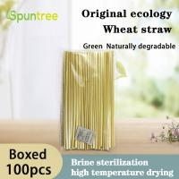 Cheap Bestseller 2020 Biodegradable Compostable Straw Drinking, Biodegradable Reed Straws for sale