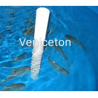 Images Of Outdoor Pond Fish Outdoor Pond Fish Photos