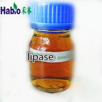China lipase enzyme for leather industry on sale