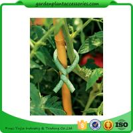 Cheap Adjustable Soft Foam Garden Plant Ties , Sturdy Plastic Garden Ties Size m L:9.9 Color green 36.5*15.5*19 for sale