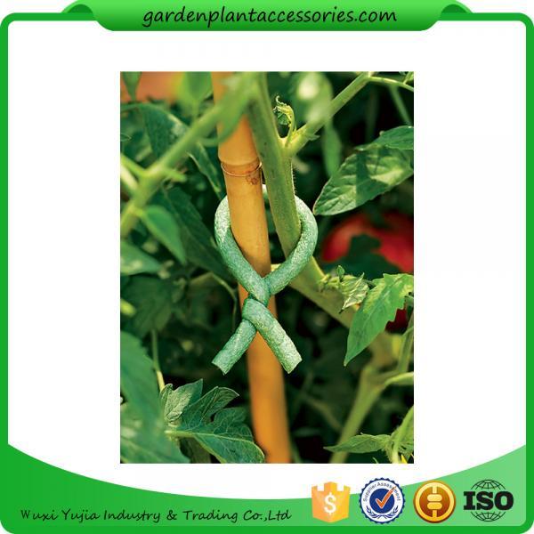 Quality Adjustable Soft Foam Garden Plant Ties , Sturdy Plastic Garden Ties Size m L:9.9 Color green 36.5*15.5*19 wholesale