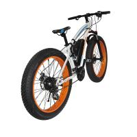 Cheap Fat Tire Snow 2 Wheel Electric Bike 500w Foldable 4-6h Charging Time With CE Certification for sale