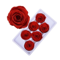 Cheap Hot selling preserved rose head with fresh rose smell everlasting rose Forever Roses Christmas gift rose for sale