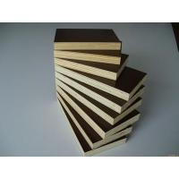 China Shandong Linyi Film Faced Plywood Marine Plywood Construction Plywood from zhongcheng on sale