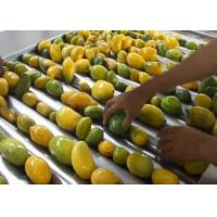 Cheap Advanced Dried Mango Processing Machine / Commercial Mango Drying Machine for sale