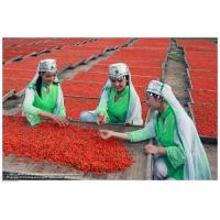 Buy cheap Ningxia Dried Goji Berry (Wolfberry),Dried Organic Gojiberry Fruit / Chinese from wholesalers