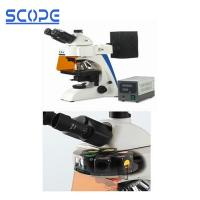 Cheap Infinity Optical Trinocular Biological Microscope , Trinocular Compound Microscope for sale