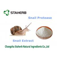 China Snail Extract Natural Cosmetics Raw Materials , Organic Cosmetic Ingredients on sale