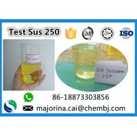 Cheap Testosterone Sustanon 250 / Test Sus 250 Mix Test Steroids Yellow Oils for sale