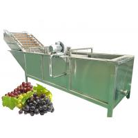 Cheap Sterilizing SS316 20T/H Grape Juice Extraction Machine for sale