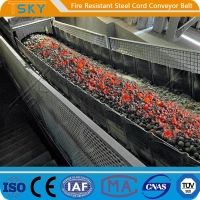Cheap ST/S2500 Fire Resistant Steel Cord Conveyor Belt Fire Retardant Conveyor Belt for sale