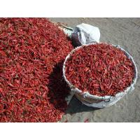 Buy cheap Dried Red Chillies from wholesalers